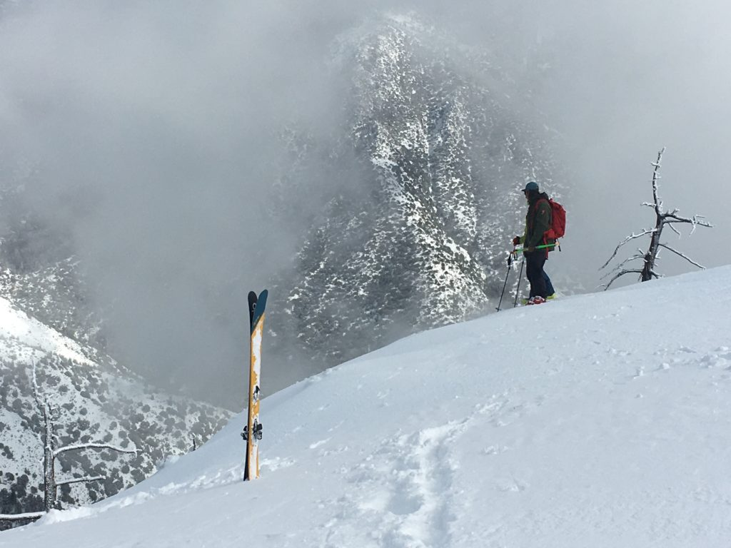Pondering the Bear Valley gullies